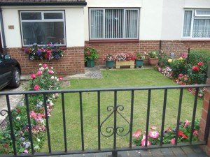 Lawn and flower beds