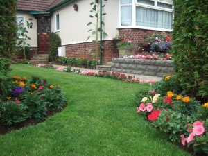 Terraced garden with lawns, flower beds, pot planters and climbing plants