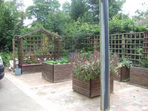 Raised beds, planted with flowers, herbs and vegetables