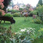 Lawn with plants in varied receptacles